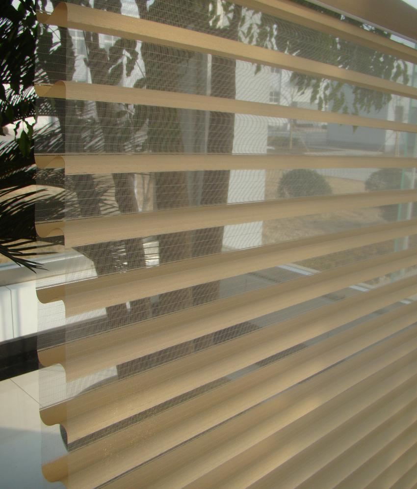Window Blind Parda